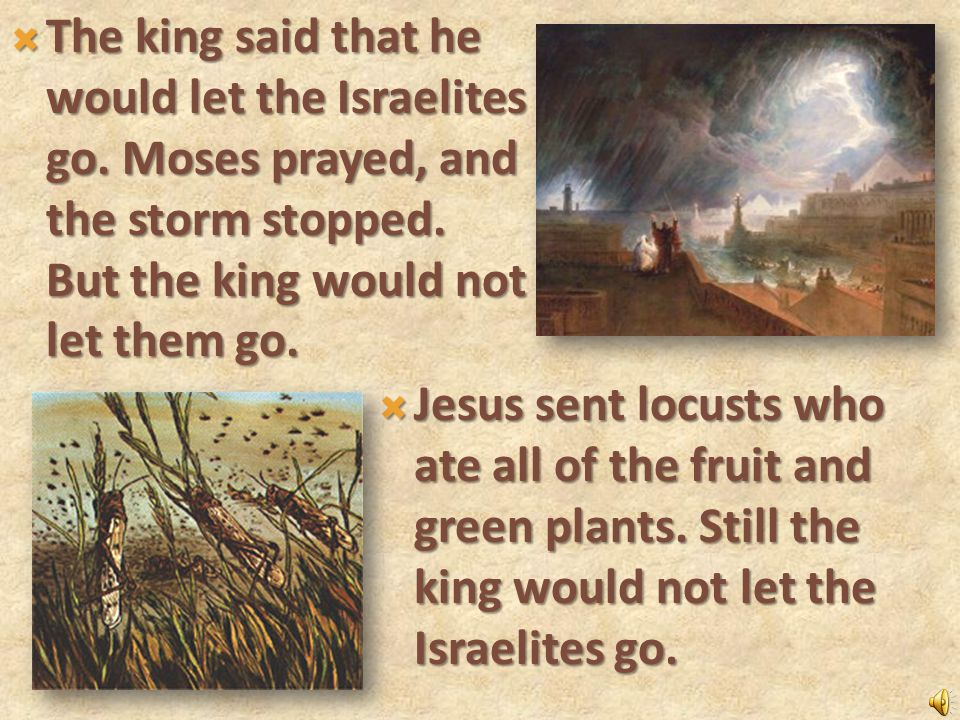  Moses said that Jesus would make the Egyptians' animals die.