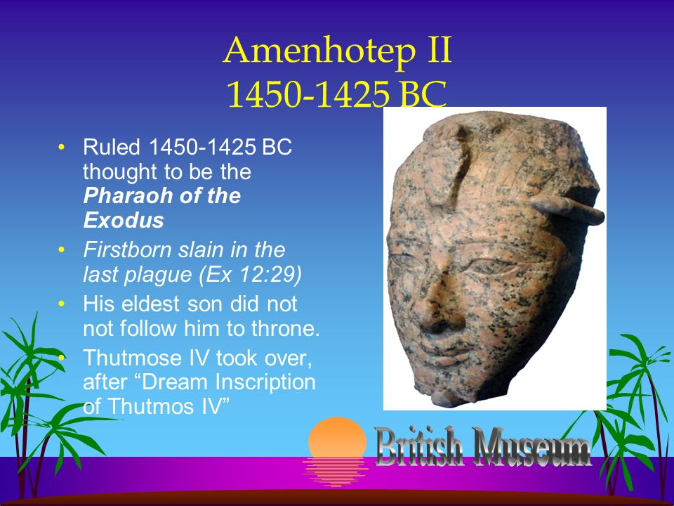 Amenhotep II 1450-1425 BC Ruled 1450-1425 BC thought to be the Pharaoh of the Exodus Firstborn slain in the last plague (Ex 12:29) His eldest son did