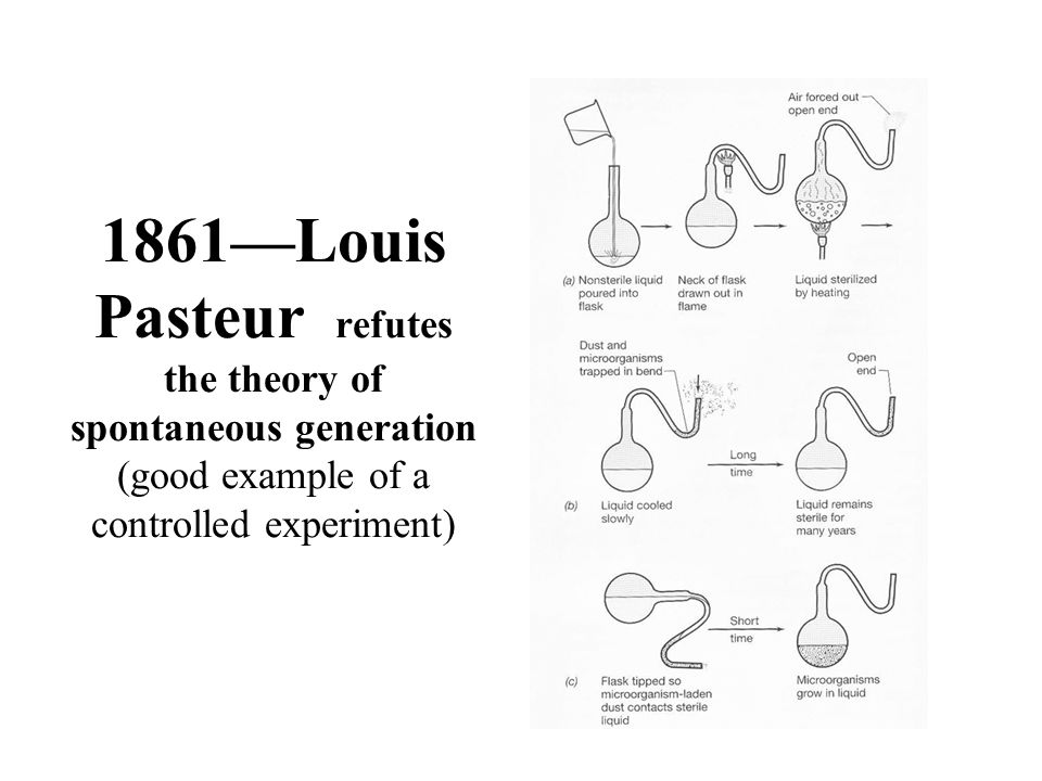 1861—Louis Pasteur refutes the theory of spontaneous generation (good example of a controlled experiment)