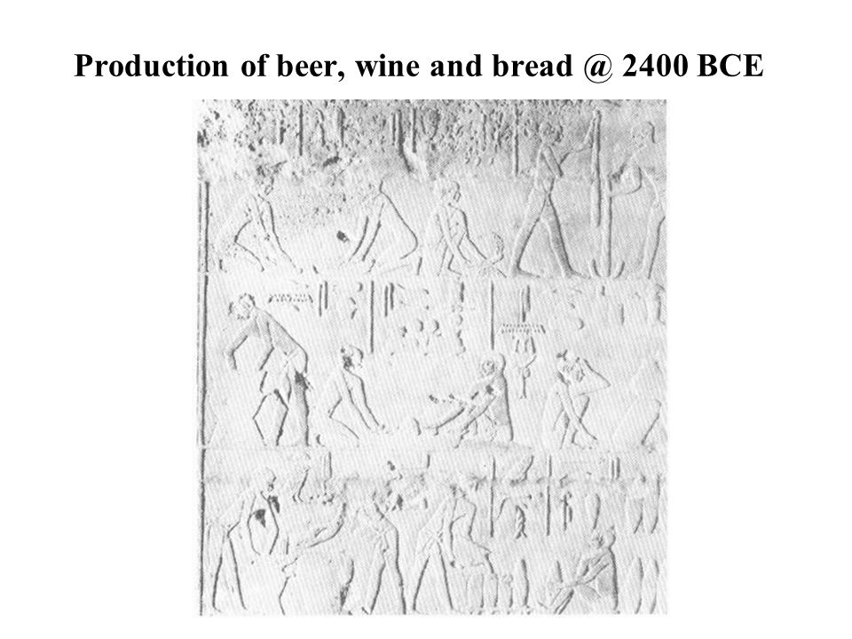 Production of beer, wine and bread @ 2400 BCE