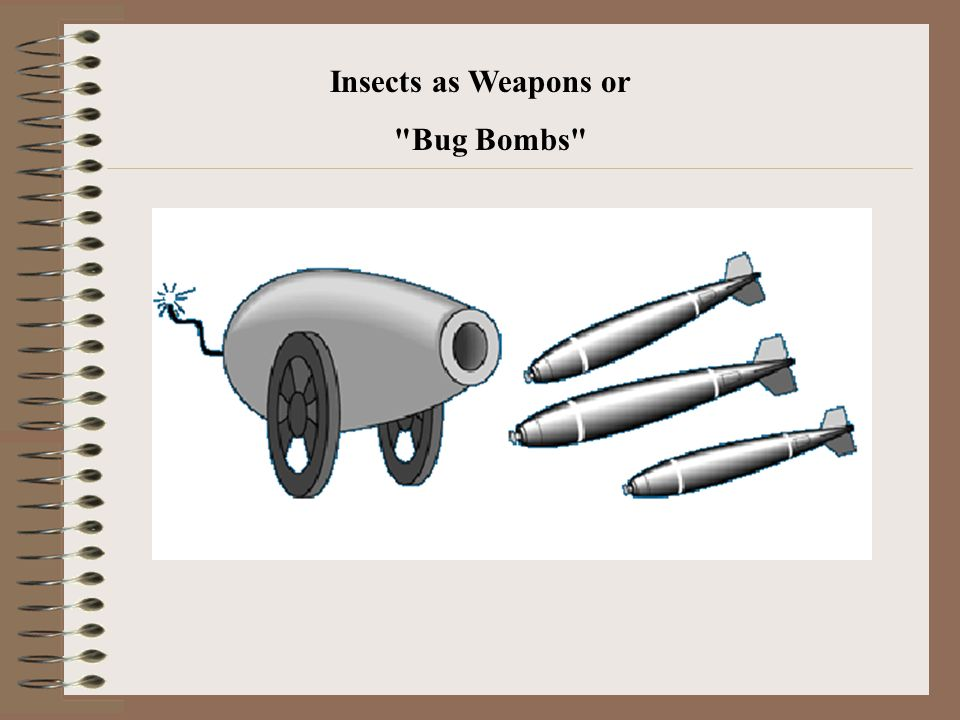 Insects as Weapons or Bug Bombs
