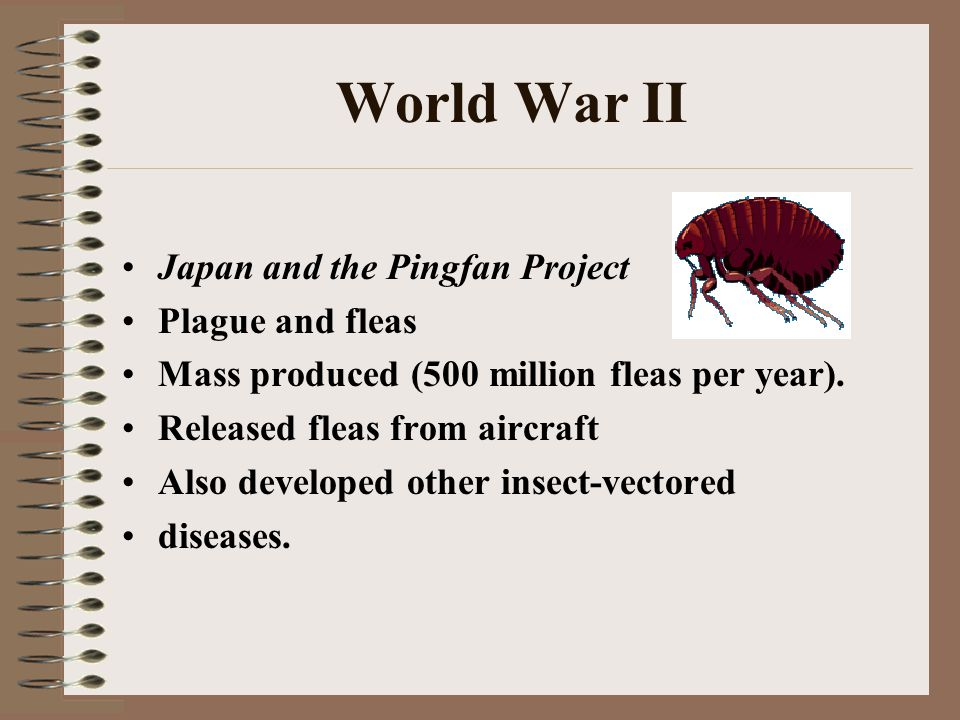 World War II Japan and the Pingfan Project Plague and fleas Mass produced (500 million fleas per year).
