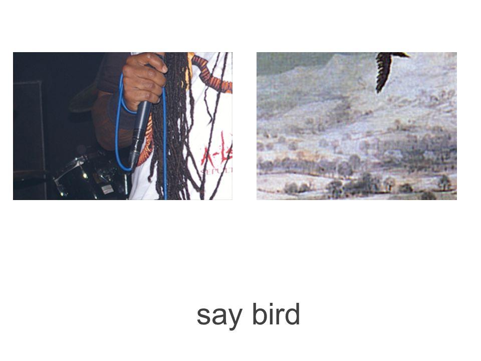 say trees