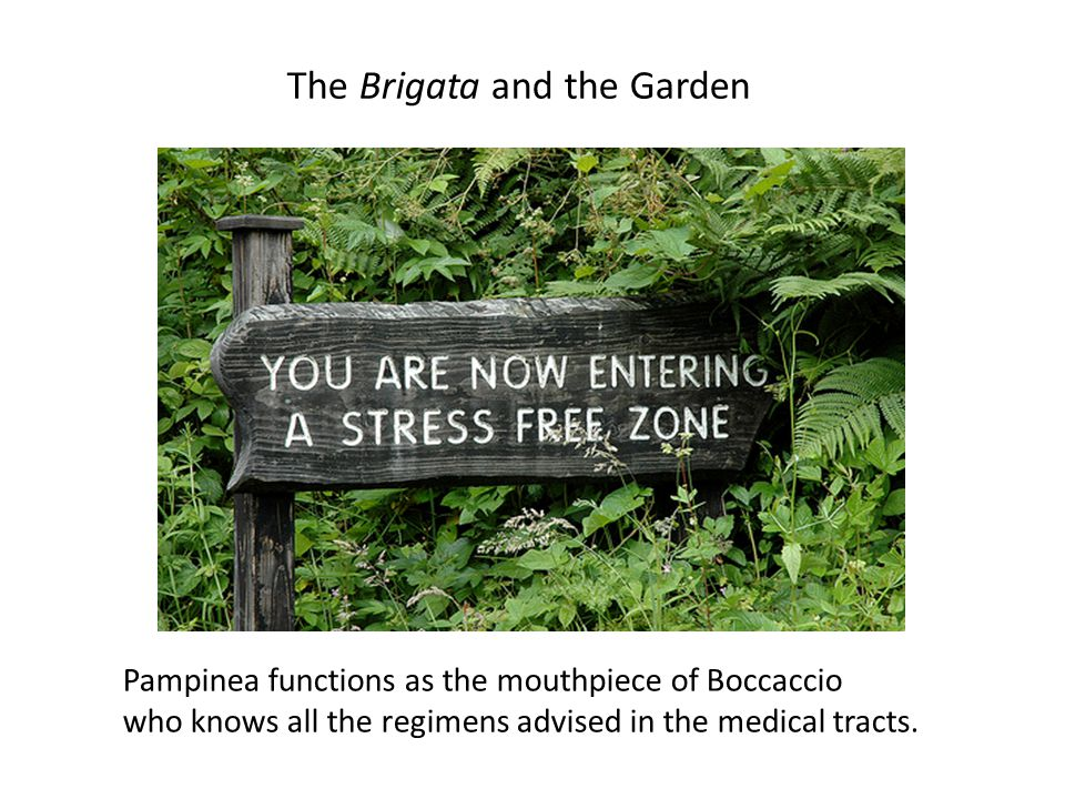 The Brigata and the Garden Pampinea functions as the mouthpiece of Boccaccio who knows all the regimens advised in the medical tracts.