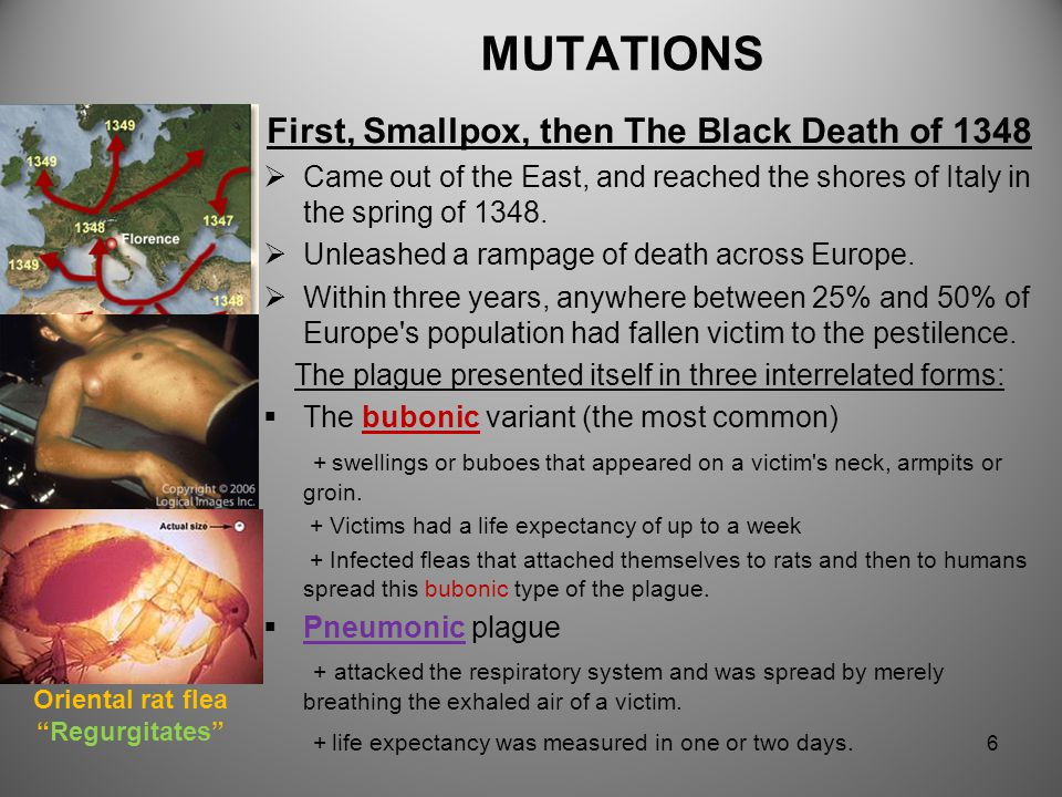 MUTATIONS Affects on health and development  Only a small percentage of mutations cause genetic disorders  Some mutations alter a gene's DNA base se