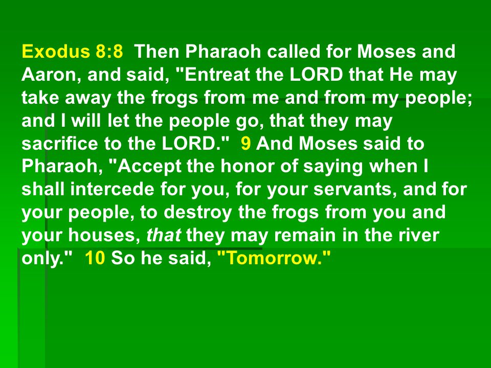 Exodus 8:8 Then Pharaoh called for Moses and Aaron, and said, Entreat the LORD that He may take away the frogs from me and from my people; and I will let the people go, that they may sacrifice to the LORD. 9 And Moses said to Pharaoh, Accept the honor of saying when I shall intercede for you, for your servants, and for your people, to destroy the frogs from you and your houses, that they may remain in the river only. 10 So he said, Tomorrow.