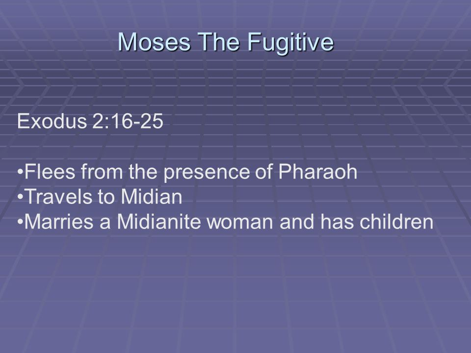 Moses The Fugitive Exodus 2:16-25 Flees from the presence of Pharaoh Travels to Midian Marries a Midianite woman and has children