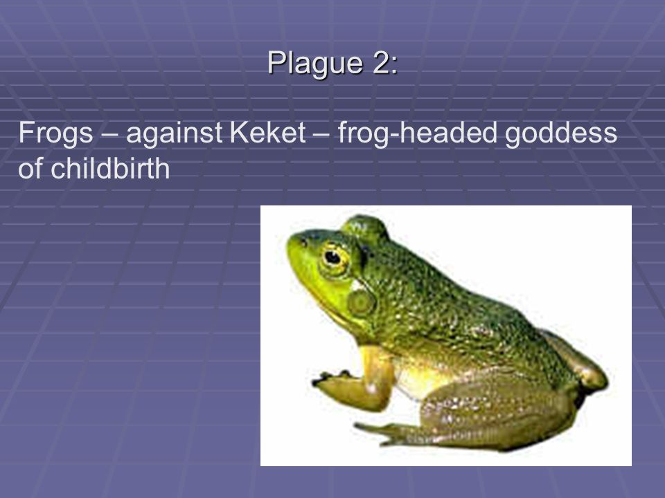 Plague 2: Frogs – against Keket – frog-headed goddess of childbirth