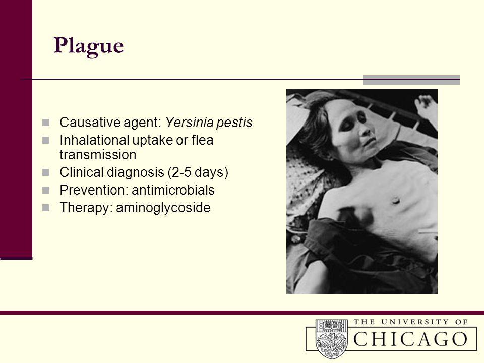 Plague Causative agent: Yersinia pestis Inhalational uptake or flea transmission Clinical diagnosis (2-5 days) Prevention: antimicrobials Therapy: ami