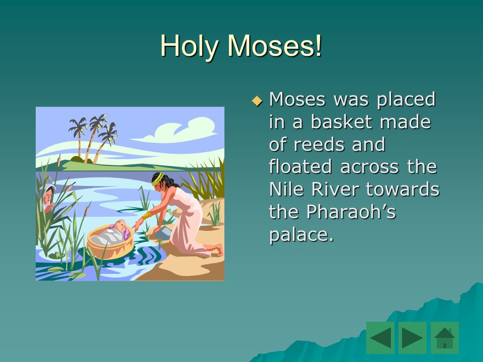Holy Moses!  Moses was placed in a basket made of reeds and floated across the Nile River towards the Pharaoh's palace.