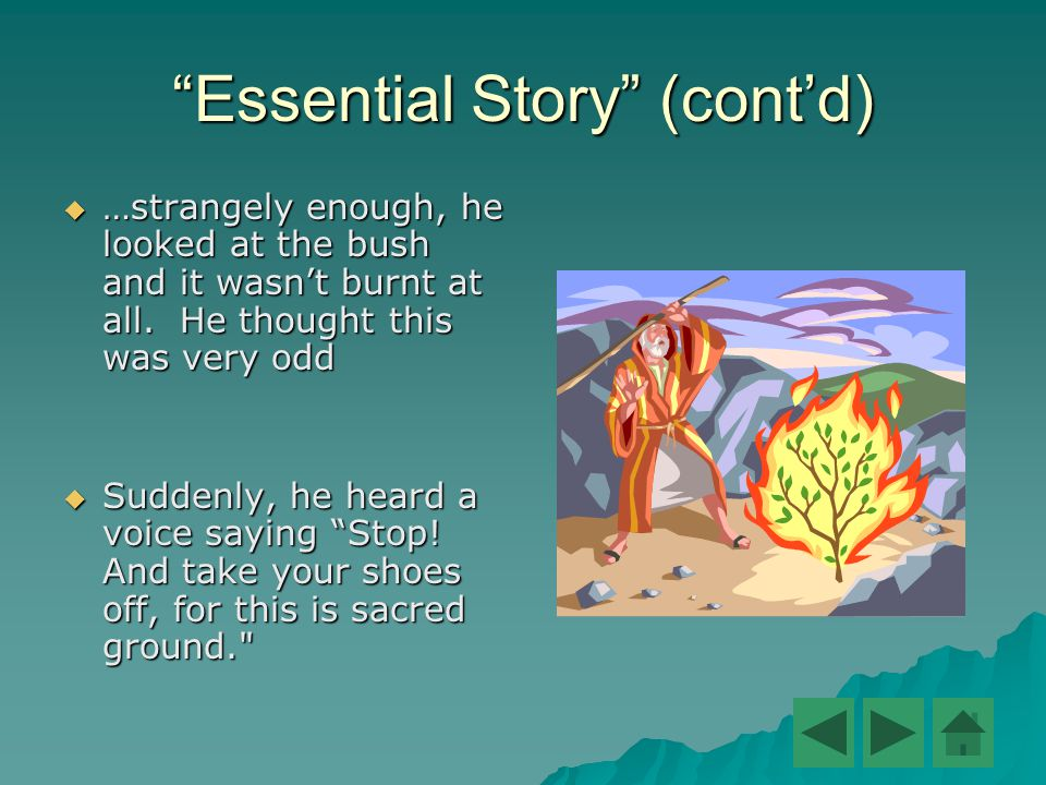 Essential Story (cont'd)  …strangely enough, he looked at the bush and it wasn't burnt at all.