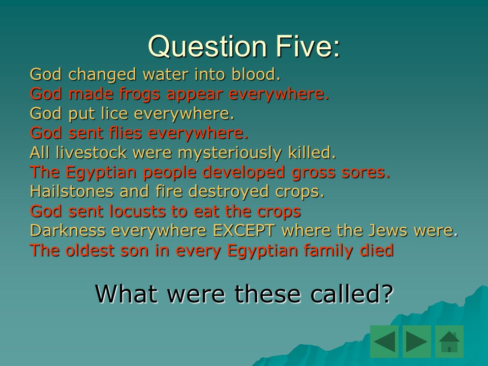 Question Five: God changed water into blood. God made frogs appear everywhere. God put lice everywhere. God sent flies everywhere. All livestock were