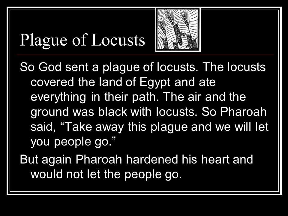 Plague of Locusts So God sent a plague of locusts.
