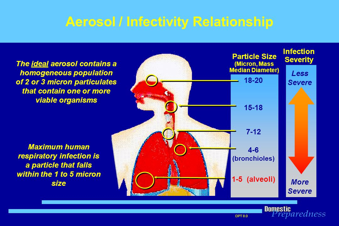 DPT 8.0 Aerosol / Infectivity Relationship 18-20 15-18 7-12 4-6 (bronchioles) 1-5 (alveoli) Infection Severity Particle Size (Micron, Mass Median Diameter) The ideal aerosol contains a homogeneous population of 2 or 3 micron particulates that contain one or more viable organisms Maximum human respiratory infection is a particle that falls within the 1 to 5 micron size Less Severe More Severe