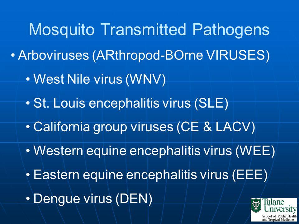Mosquito Transmitted Pathogens Arboviruses (ARthropod-BOrne VIRUSES) West Nile virus (WNV) St.