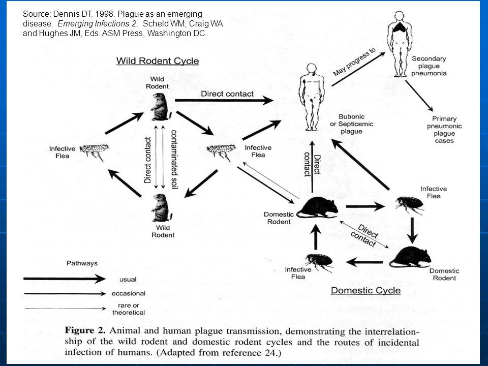 Source: Dennis DT. 1998. Plague as an emerging disease.