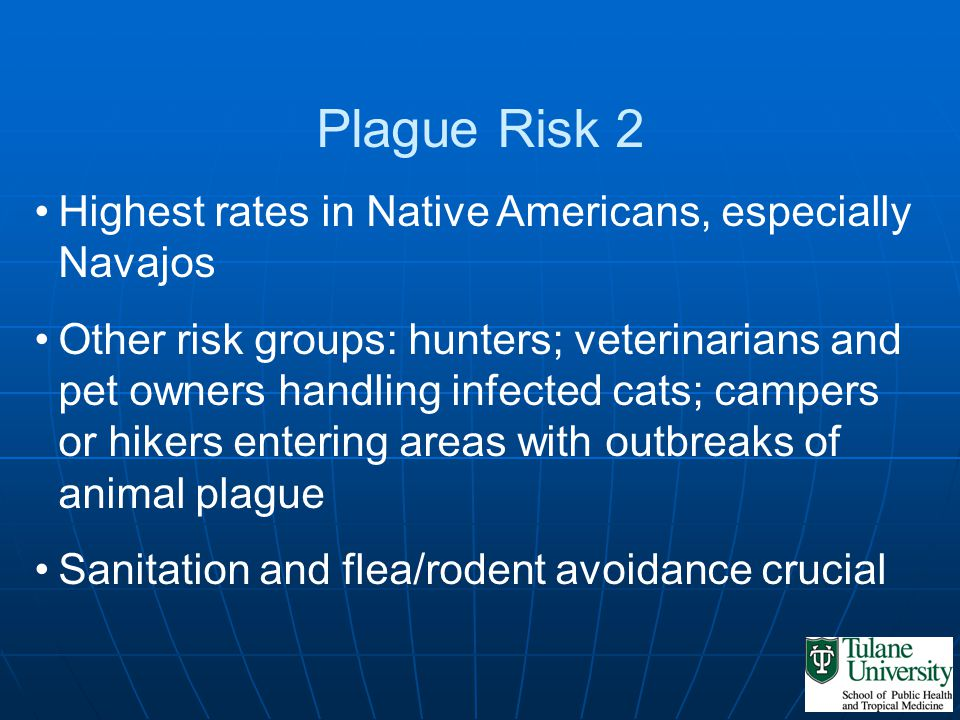 Plague Risk 2 Highest rates in Native Americans, especially Navajos Other risk groups: hunters; veterinarians and pet owners handling infected cats; c
