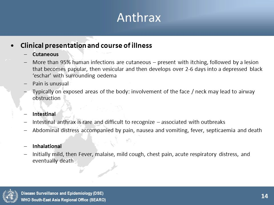 14 Disease Surveillance and Epidemiology (DSE) WHO South-East Asia Regional Office (SEARO) Anthrax Clinical presentation and course of illness –Cutane