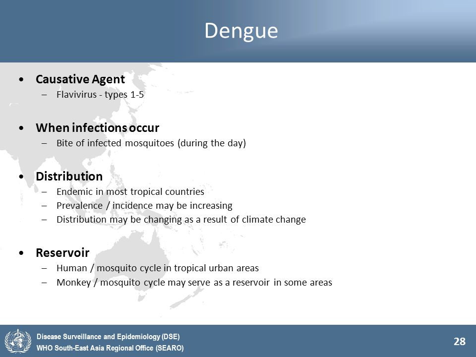 28 Disease Surveillance and Epidemiology (DSE) WHO South-East Asia Regional Office (SEARO) Dengue Causative Agent –Flavivirus - types 1-5 When infecti