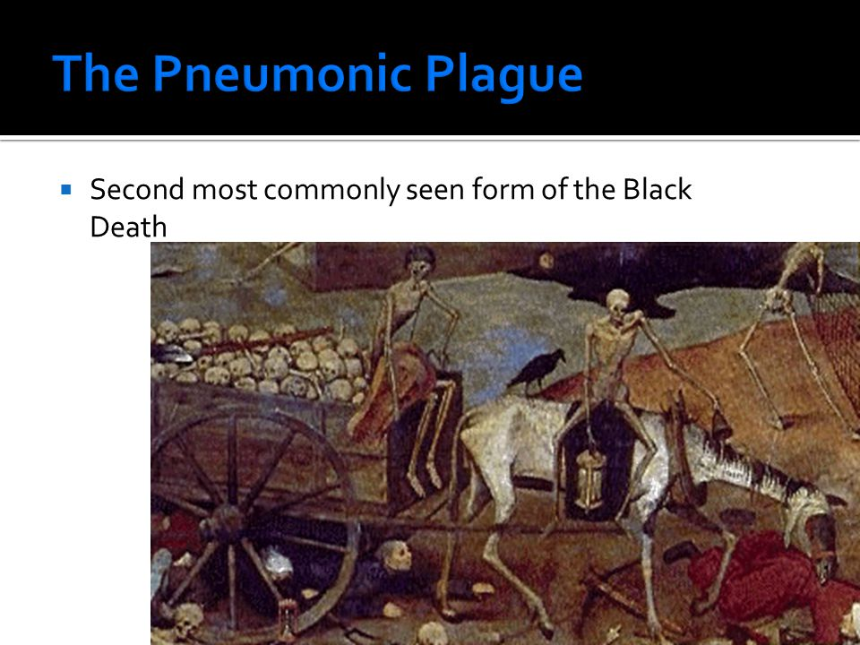  Second most commonly seen form of the Black Death