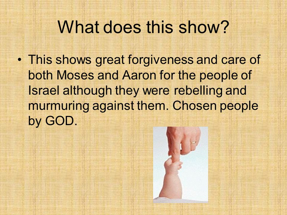 What does this show? This shows great forgiveness and care of both Moses and Aaron for the people of Israel although they were rebelling and murmuring