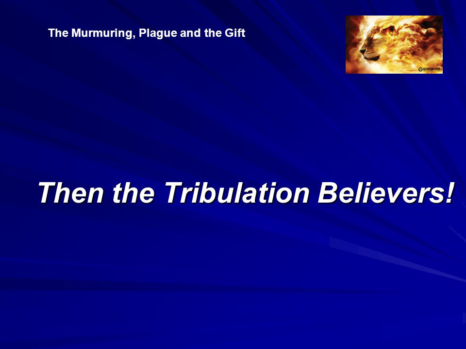 Then the Tribulation Believers! The Murmuring, Plague and the Gift