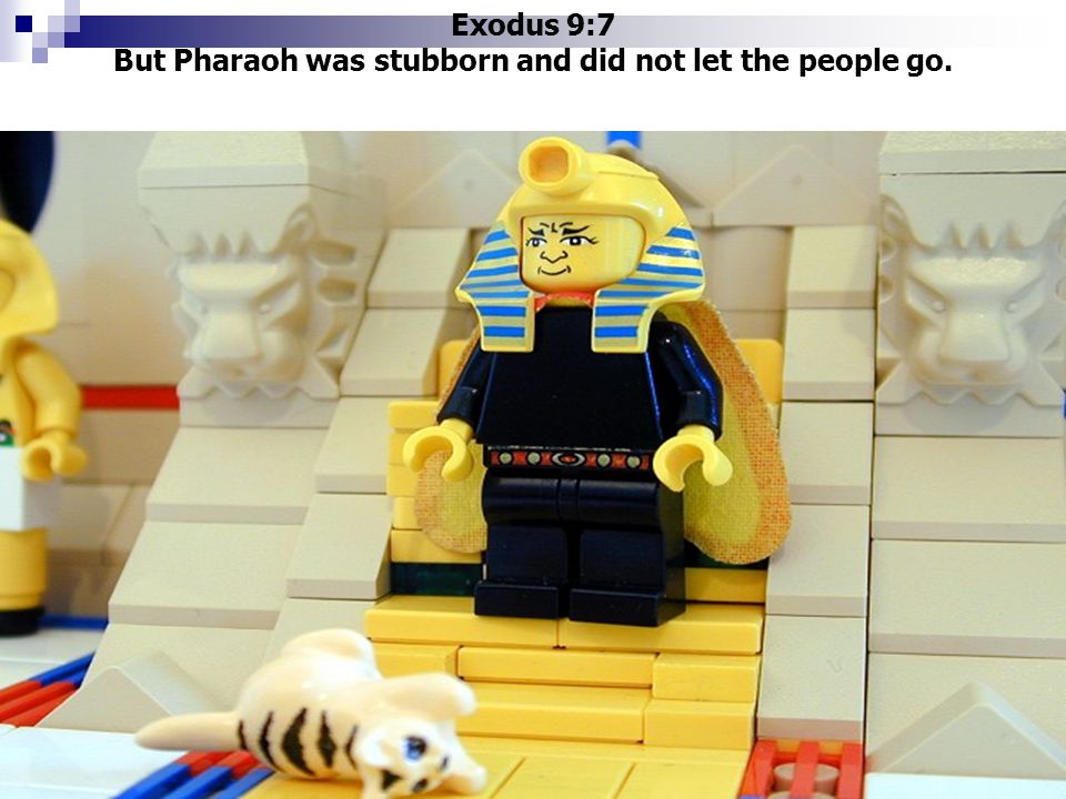 Exodus 9:7 But Pharaoh was stubborn and did not let the people go.