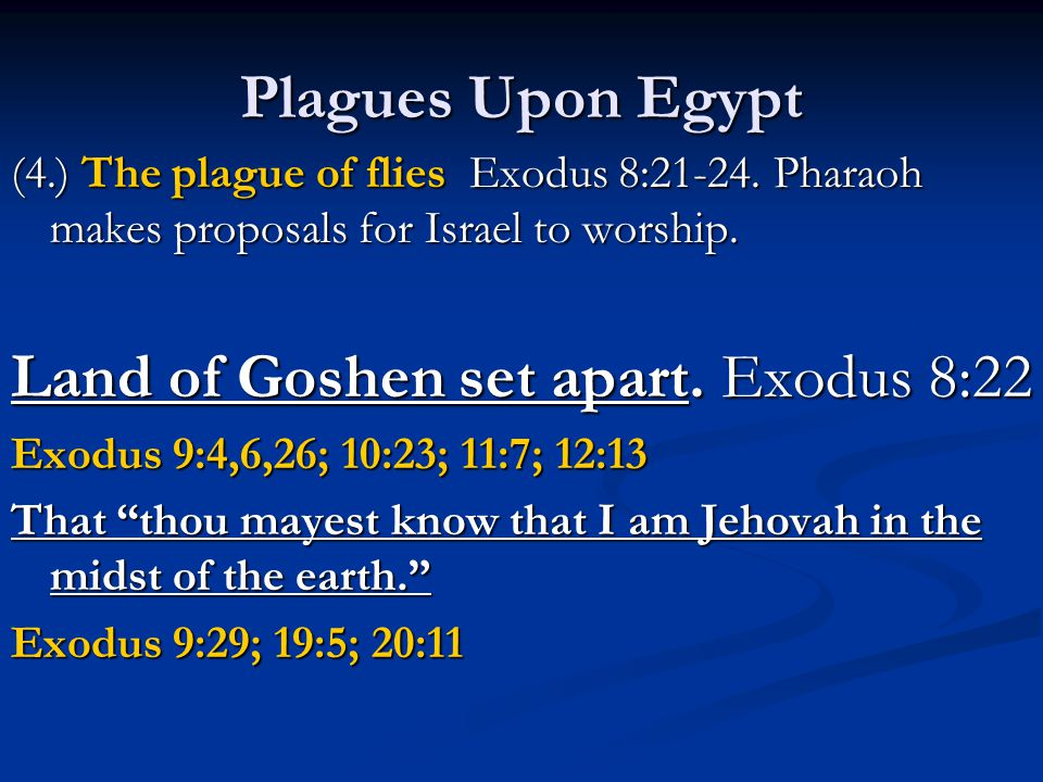 Plagues Upon Egypt (4.) The plague of flies Exodus 8:21-24.