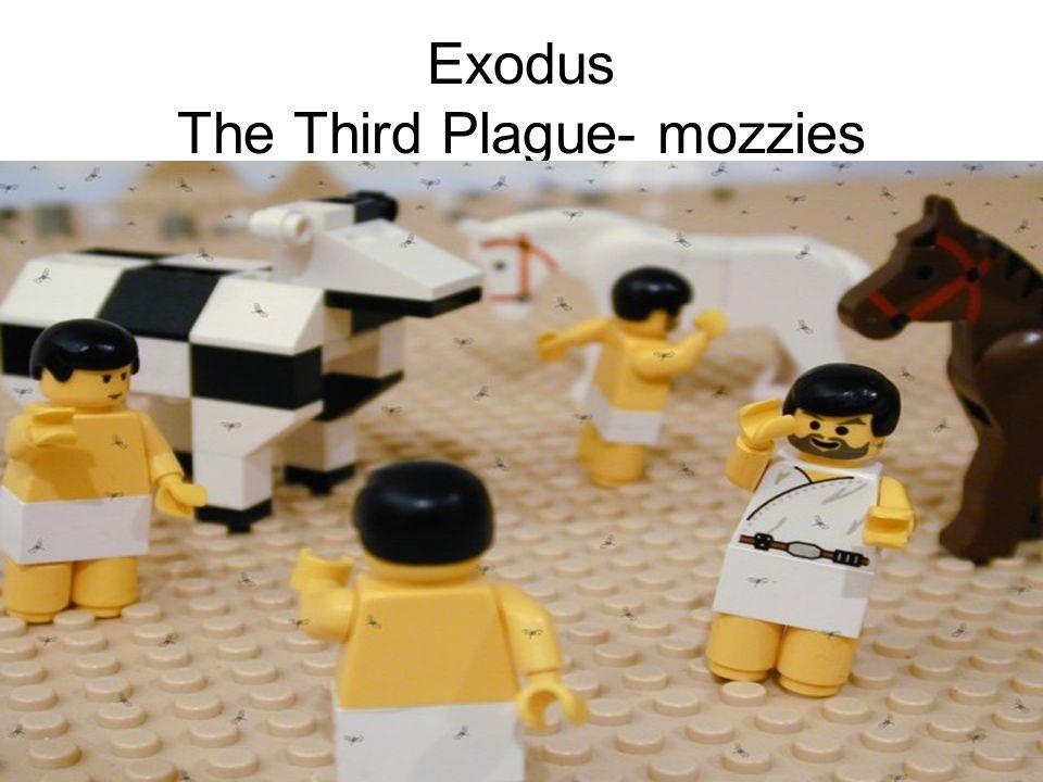 Exodus The Third Plague- mozzies