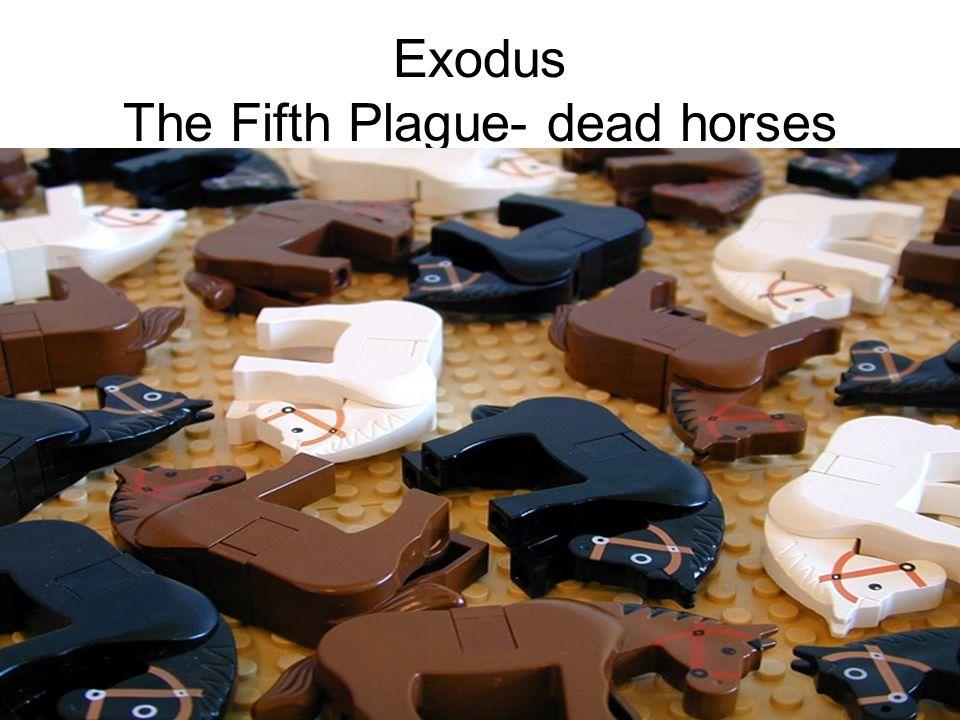Exodus The Fifth Plague- dead horses
