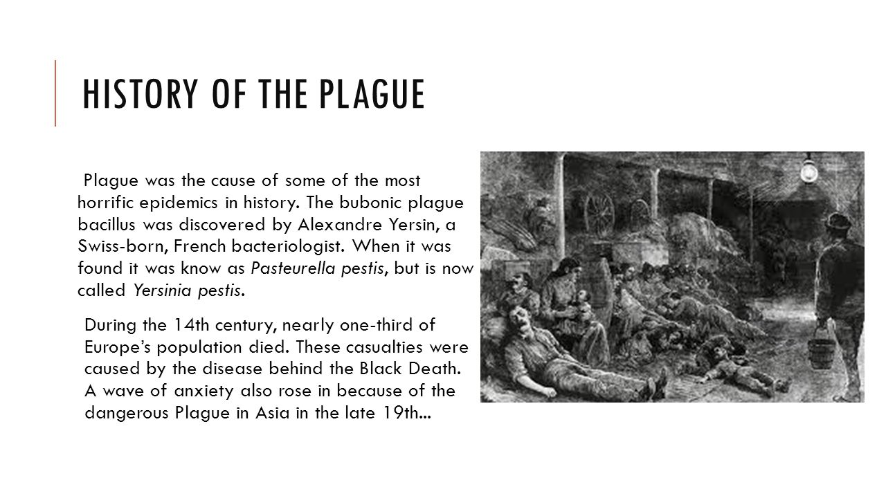 WHAT IT IS Plague is caused by the bacterial disease Yersinia pestis.
