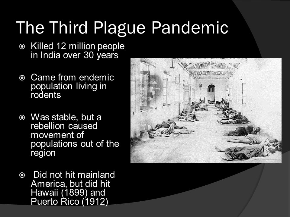 The Third Plague Pandemic  Killed 12 million people in India over 30 years  Came from endemic population living in rodents  Was stable, but a rebellion caused movement of populations out of the region  Did not hit mainland America, but did hit Hawaii (1899) and Puerto Rico (1912)