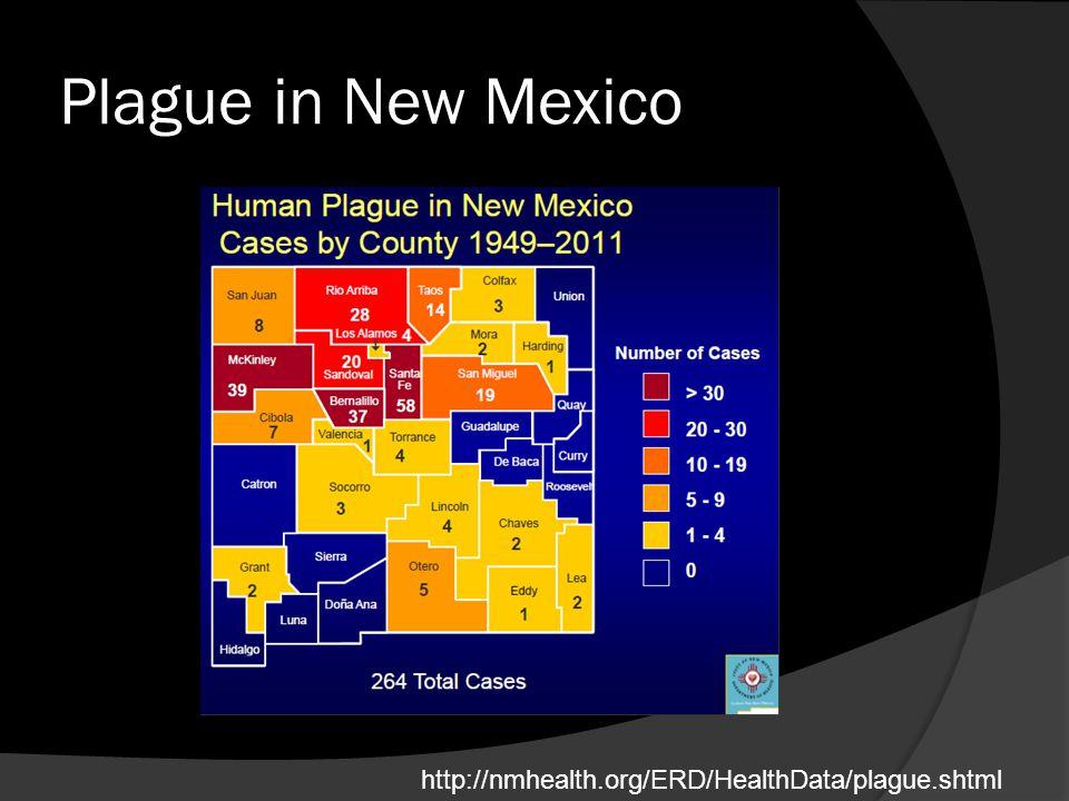 Plague in New Mexico http://nmhealth.org/ERD/HealthData/plague.shtml