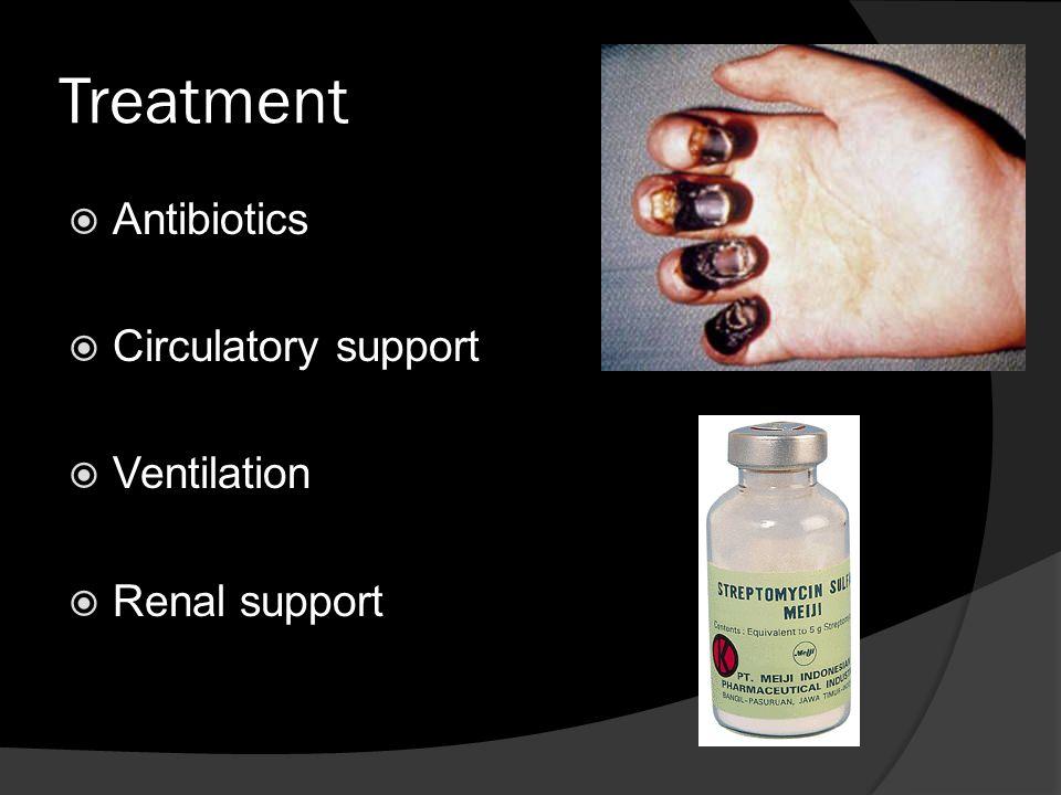 Treatment  Antibiotics  Circulatory support  Ventilation  Renal support