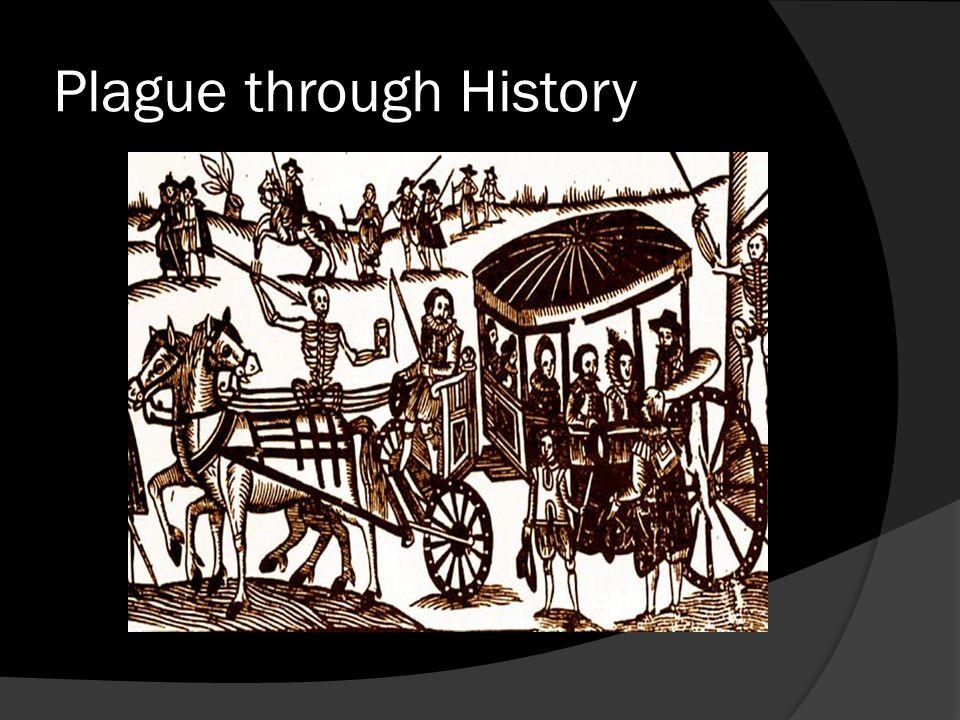Plague through History
