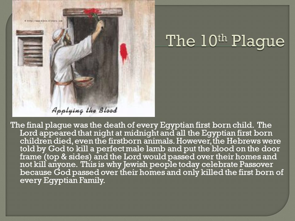 The final plague was the death of every Egyptian first born child.