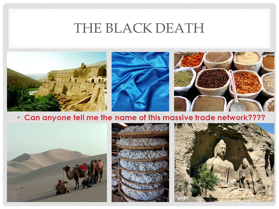 THE BLACK DEATH Can anyone tell me the name of this massive trade network????