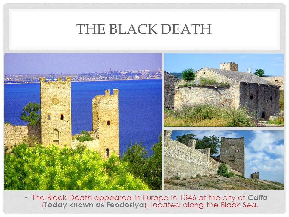THE BLACK DEATH The Black Death appeared in Europe in 1346 at the city of Caffa ( Today known as Feodosiya ), located along the Black Sea.