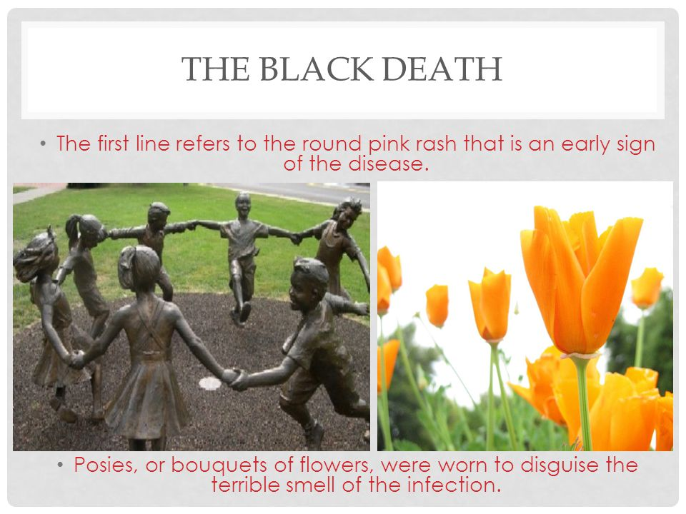 THE BLACK DEATH The first line refers to the round pink rash that is an early sign of the disease. Posies, or bouquets of flowers, were worn to disgui
