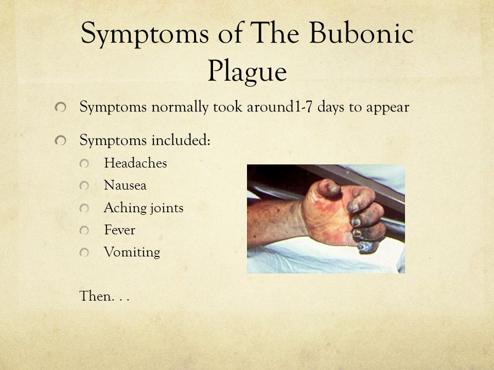 Symptoms of The Bubonic Plague Symptoms normally took around1-7 days to appear Symptoms included: Headaches Nausea Aching joints Fever Vomiting Then..