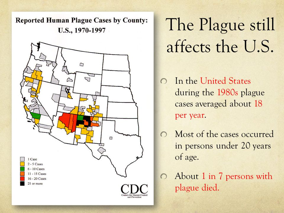 The Plague still affects the U.S. In the United States during the 1980s plague cases averaged about 18 per year. Most of the cases occurred in persons