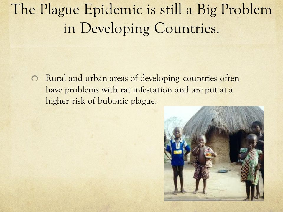 The Plague Epidemic is still a Big Problem in Developing Countries. Rural and urban areas of developing countries often have problems with rat infesta
