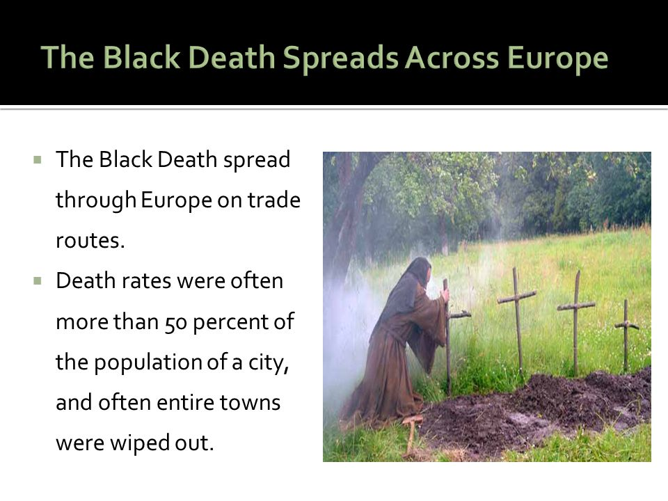  The Black Death spread through Europe on trade routes.  Death rates were often more than 50 percent of the population of a city, and often entire t