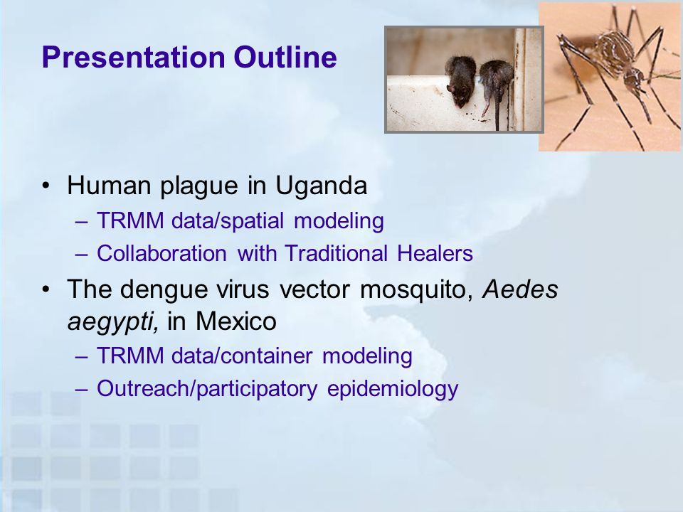 Presentation Outline Human plague in Uganda –TRMM data/spatial modeling –Collaboration with Traditional Healers The dengue virus vector mosquito, Aedes aegypti, in Mexico –TRMM data/container modeling –Outreach/participatory epidemiology