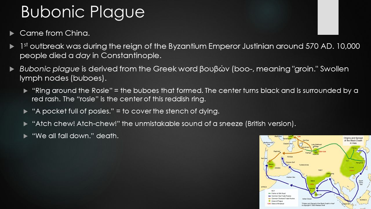 Bubonic Plague  Came from China.