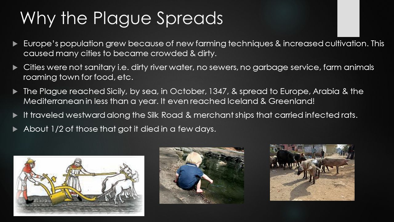 Why the Plague Spreads  Europe's population grew because of new farming techniques & increased cultivation. This caused many cities to became crowded