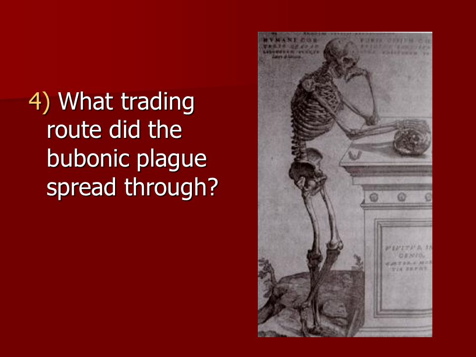 4) What trading route did the bubonic plague spread through?