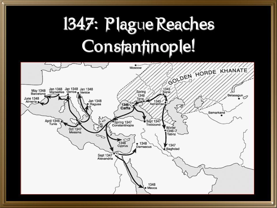 1347: Plague Reaches Constantinople!