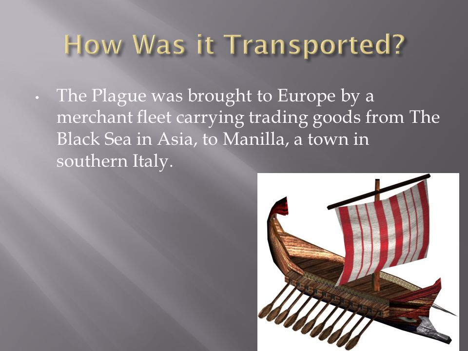 The Plague was brought to Europe by a merchant fleet carrying trading goods from The Black Sea in Asia, to Manilla, a town in southern Italy.