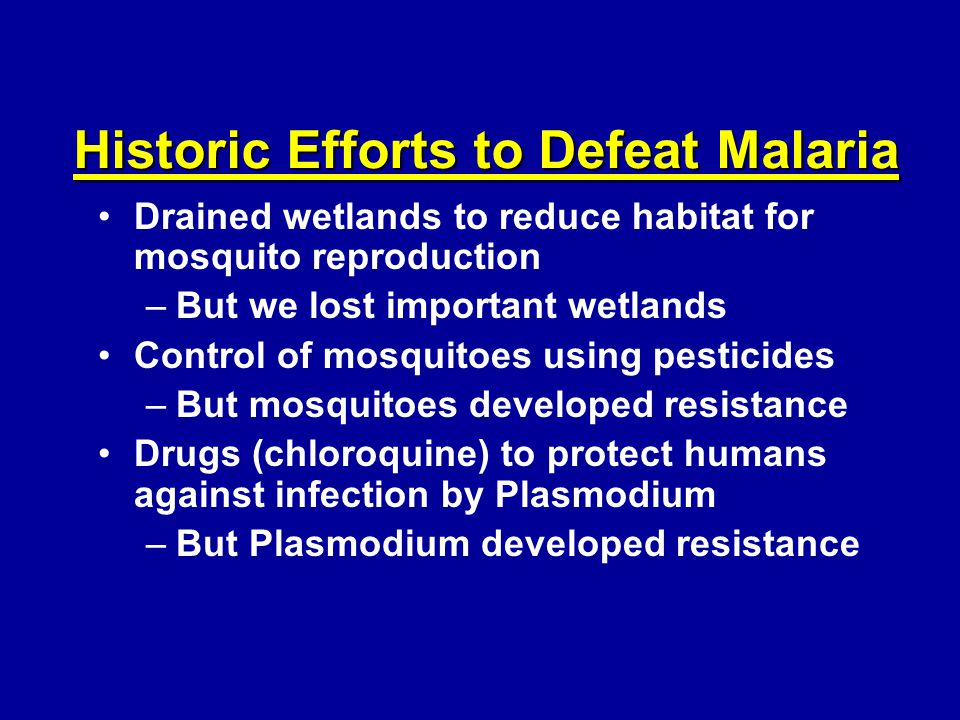 Historic Efforts to Defeat Malaria Drained wetlands to reduce habitat for mosquito reproduction –But we lost important wetlands Control of mosquitoes using pesticides –But mosquitoes developed resistance Drugs (chloroquine) to protect humans against infection by Plasmodium –But Plasmodium developed resistance